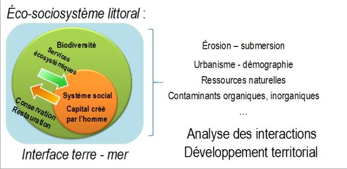 Eco-sociosysteme littoral