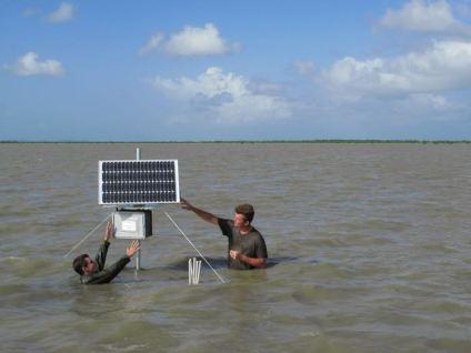 Installation d'instrumentation scientifique sur une vasière, banc de Kourou © SLesourd