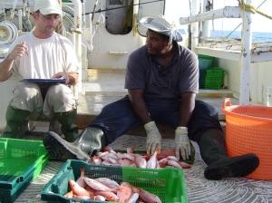 Mesures de poissons à bord d'un bateau © Ifremer