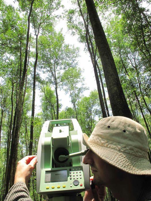 Tachéomètre mesure architecture arbres © © CProisy, IRD, UMR AMAP